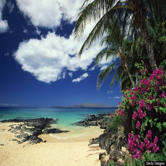 Glorious hawaii